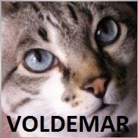 Voldemar227