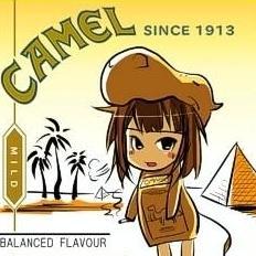 CAMEL26